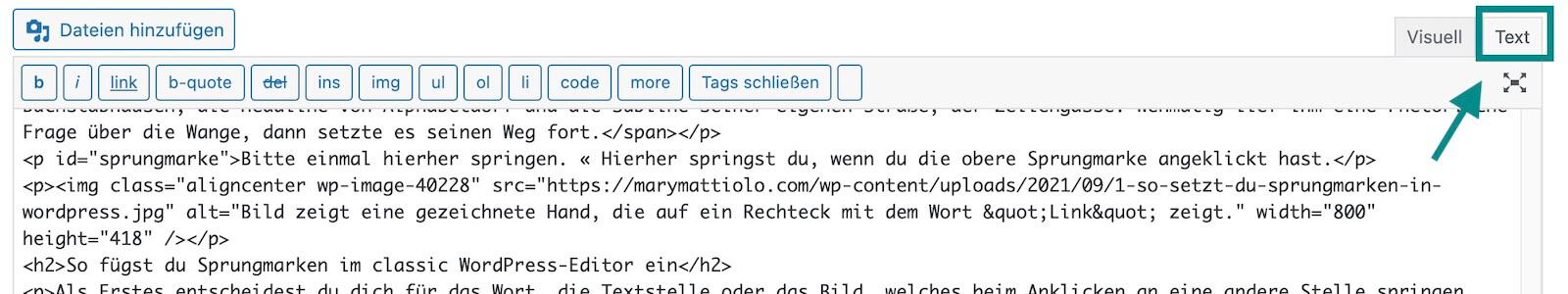 Bild zeigt Text-Ansicht des Classic-Editors in WordPress.